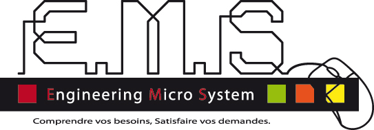 ENGINEERING MICRO SYSTEM (EMS)